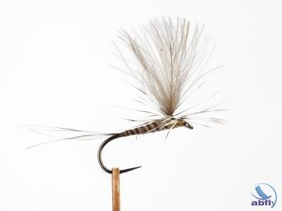 Parachute Natural Quill