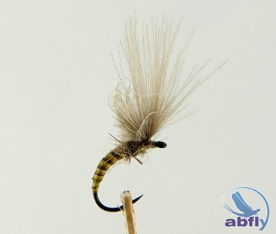Sucha Mucha Emerger Natural Quill Olive